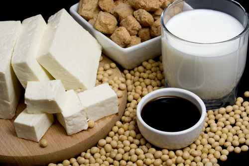 Soy Protein Helps to Maintain Bone Density