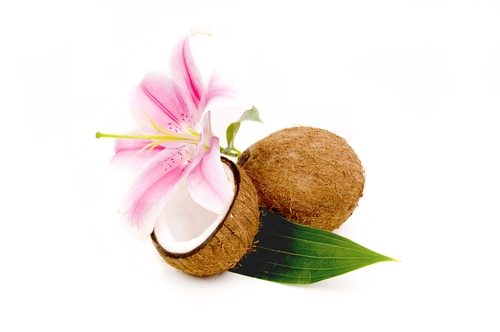 Coconut Diet