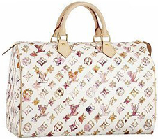 Louis Vuitton watercolor speedy