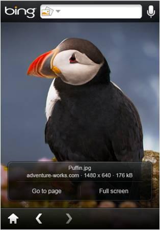 Bing App for iPhone