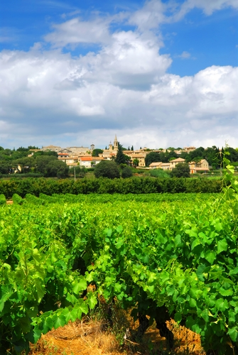 Wine France region