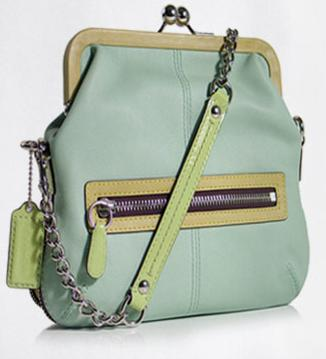 Coach Olive Frame Bag